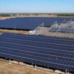 Photovoltaïque et culture du Ginseng