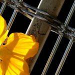 tissu métallique à tiges de bambou intégrées